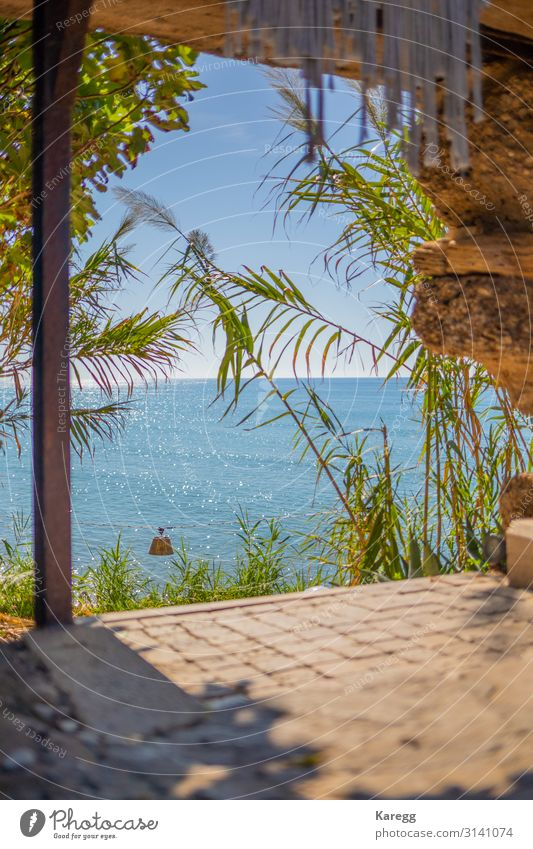 blue sea in beautiful weather Relaxation Vacation & Travel Summer Beach Environment Nature Landscape Sand Water Sky Cloudless sky Horizon Plant Coast Ocean