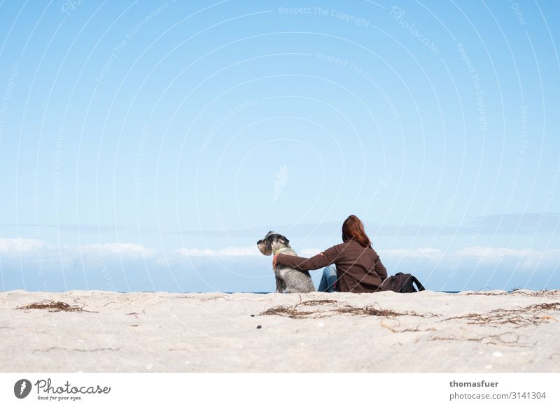 Woman with dog at the beach looking into the distance Vacation & Travel Trip Summer Summer vacation Ocean Human being Feminine Adults 1 Landscape Cloudless sky