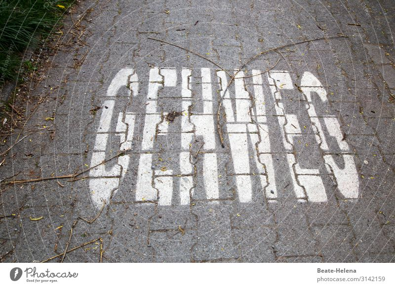 Paved path with inscription: Functional assignment for pedestrians and/or appeal from cyclists to pedestrians! Street off paved Go away! warning cry