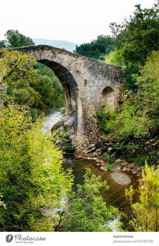 A medieval bridge in campania, italy Vacation & Travel Tourism Mountain Landscape River Ruin Bridge Street Stone Historic cilento Campania Italy calore gorges