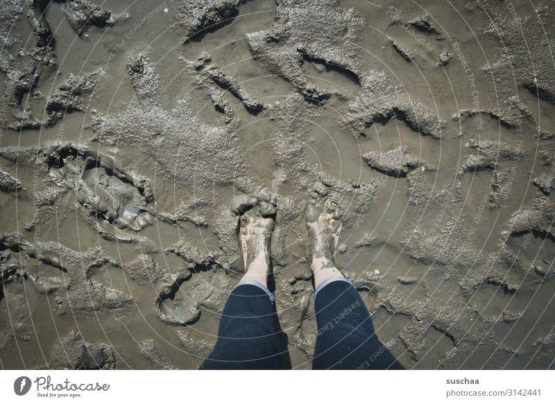 pretty muddy Mud Slick Dirty Ocean Mud flats Beach Wet North Sea Baltic Sea healing earth Wellness Healthy Cure Vacation & Travel Sludgy Barefoot