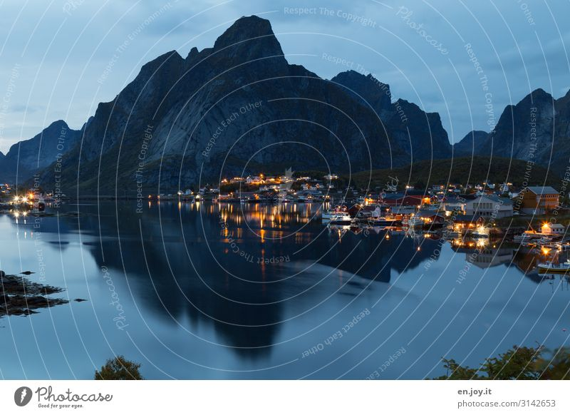 Blue nights Vacation & Travel Environment Night sky Mountain Fjord Island Reine Lofotes Norway Scandinavia Europe Fishing village Small Town Idyll Tourism