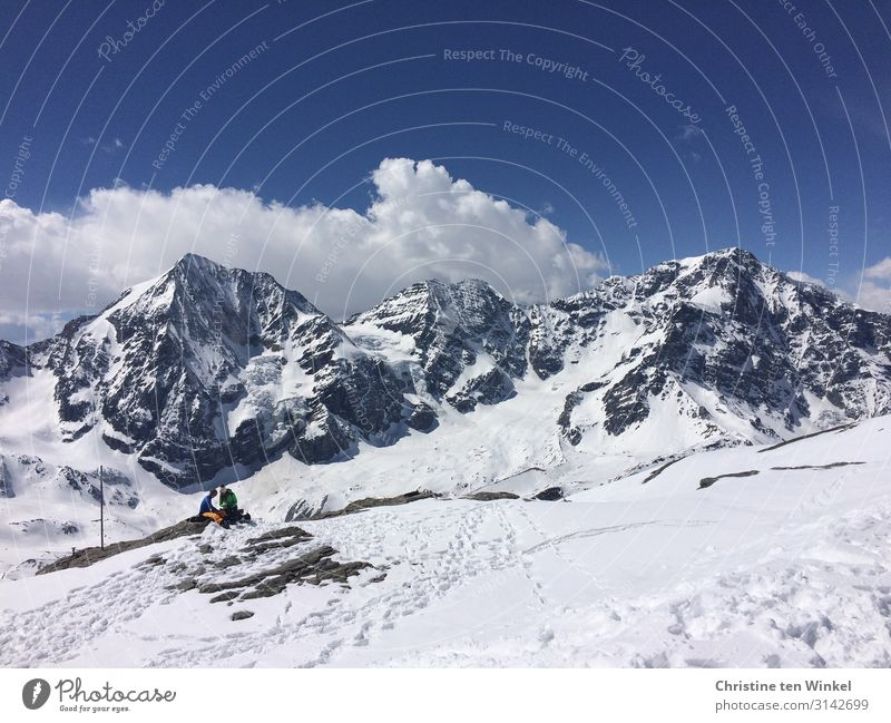 View of the snowy peaks of Ortler and Königsspitze in South Tyrol Winter vacation Mountain Snowcapped peak Alps suffer Sulden am Ortler Vacation & Travel