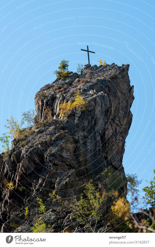 Summit with cross over Bodetal Nature Landscape Earth Air Sky Cloudless sky Autumn Beautiful weather Tree Bushes Rock Mountain Peak Stone Crucifix Tall Blue