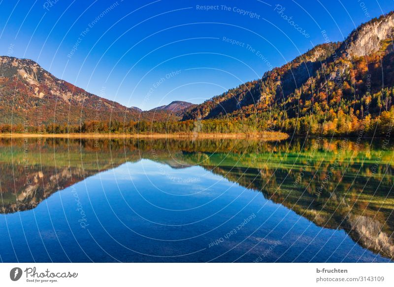 Reflection in the lake Mountain Hiking Nature Landscape Sky Autumn Beautiful weather Tree Leaf Forest Alps Lake Loneliness To enjoy Environment