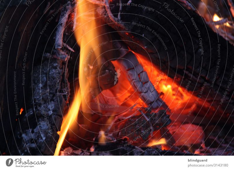 The heating period has begun Elements Fire Climate change Bad weather Ice Frost Fireside Barbecue (apparatus) Wood Hot Yellow Orange Red Black Eroticism Cozy