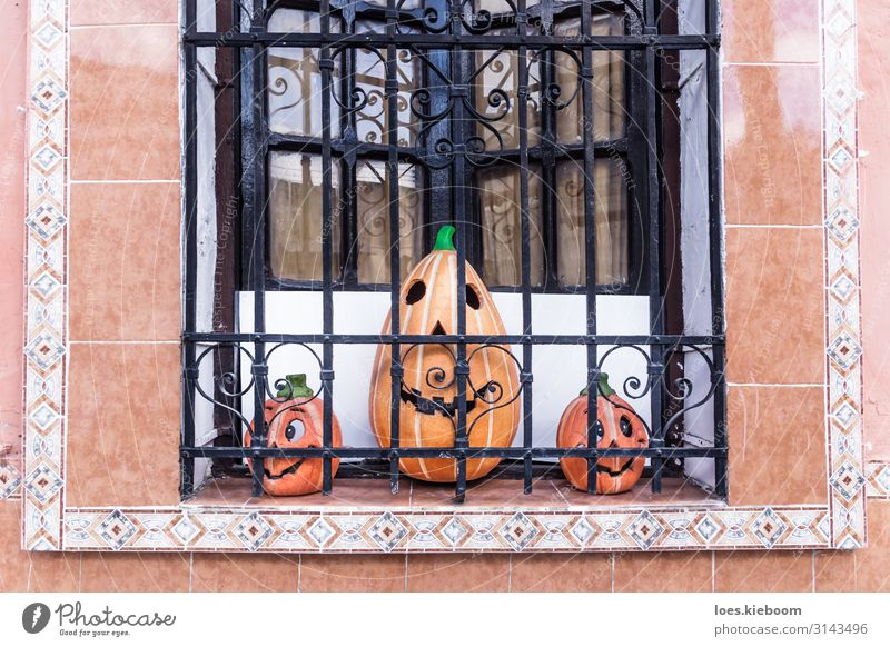 Three smiling pumpkins in a colonial window Joy Vacation & Travel Tourism Far-off places Sightseeing City trip Event Hallowe'en Work of art Sculpture Culture