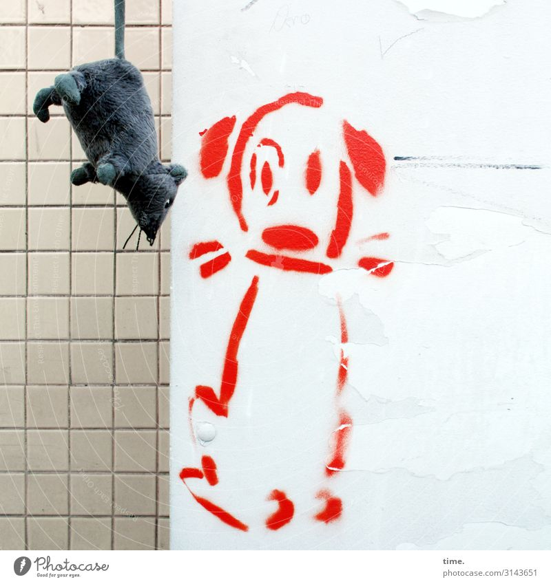 passenger Wall (barrier) Wall (building) Tile Animal Dog Plush Cuddly toy Rat 2 Toys Decoration Kitsch Odds and ends Souvenir Colour Stone Plastic Sign Graffiti
