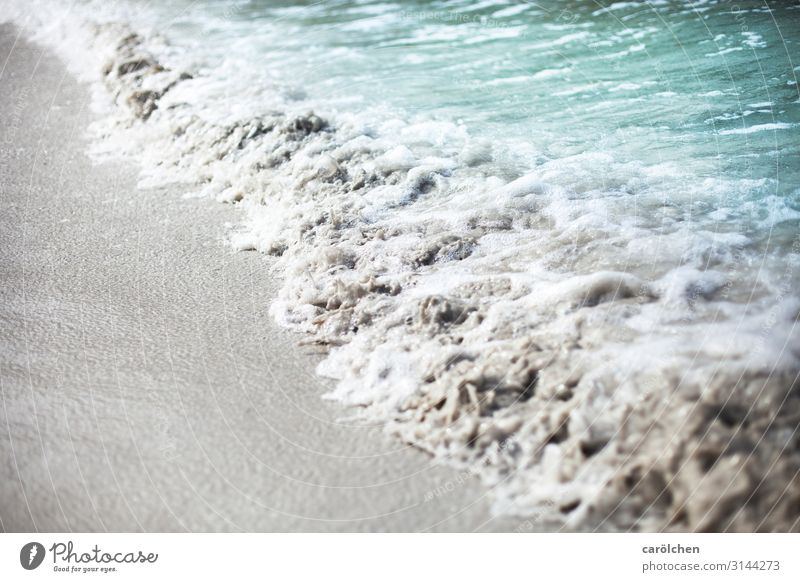 noise Waves Gray Turquoise Beach Sandy beach Surf Foam Ocean Hissing Come Water Colour photo Exterior shot Close-up Deserted Copy Space left