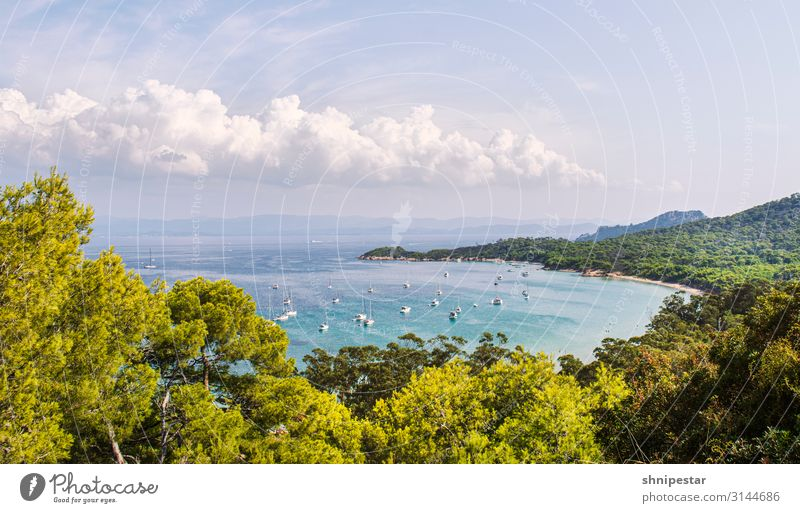 Île de Porquerolles, France Luxury Leisure and hobbies Vacation & Travel Tourism Trip Adventure Far-off places Cruise Expedition Summer Summer vacation Sun