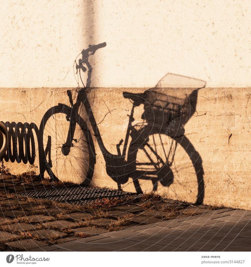 shadow wheel Cycling Wall (barrier) Wall (building) Bicycle Brown Black Shadow play Colour photo Subdued colour Exterior shot Day Contrast Central perspective
