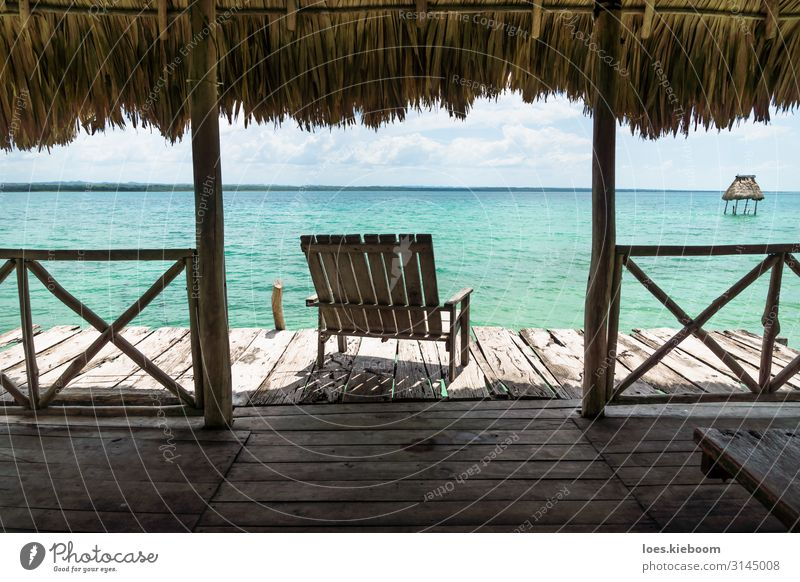 Vacation & Travel Nature Summer Landscape Sun Relaxation Calm Joy Far-off places Beach Healthy Natural Sports Coast Tourism Freedom