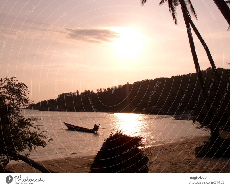 Chalok Ban Kao Bay Beach Sunset Watercraft Ocean Palm tree