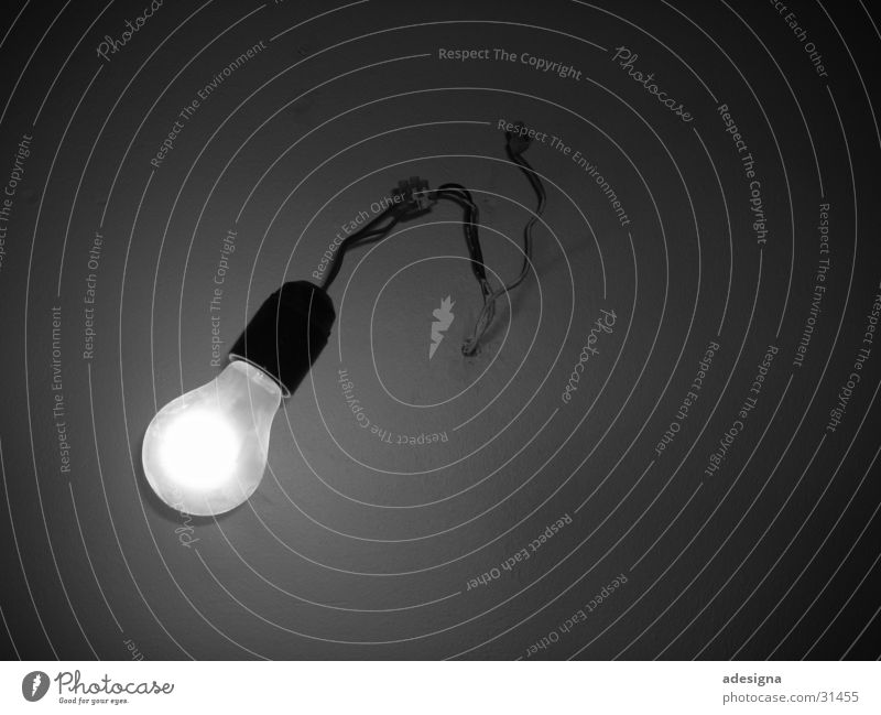 fluorescent fruit Electric bulb Wire Simplistic Pure Light Dark Electrical equipment Technology Bracket Black & white photo Simple Bright