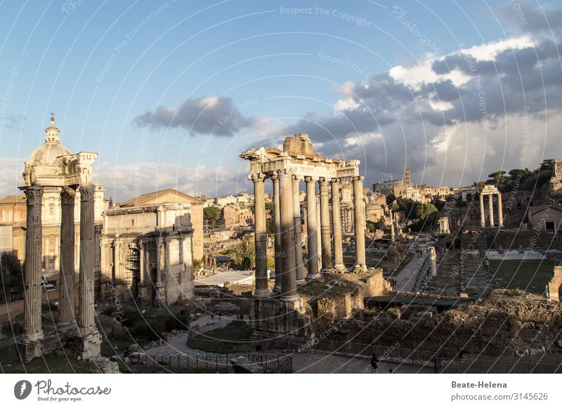 Roman Forum Clouds Rome Manmade structures Building Wall (barrier) Wall (building) Column Landmark Forum Romano Stone Sign Ruin Old times Esthetic Exceptional