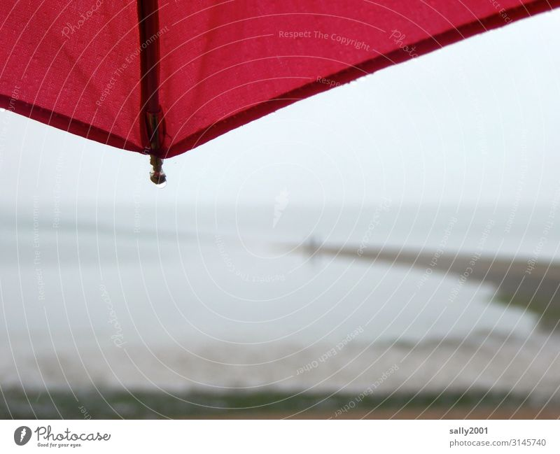 November blues... Autumn Climate Weather Bad weather Fog Rain Coast Beach Ocean Atlantic Ocean Observe Stand Fluid Wet Red Umbrella Vantage point Dreary Gloomy