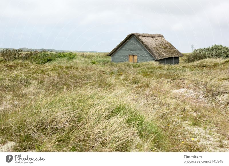 Quiet location Vacation & Travel Environment Nature Landscape Plant Weather Grass Meadow Denmark Hut Lanes & trails Simple Natural Blue Brown Green Emotions