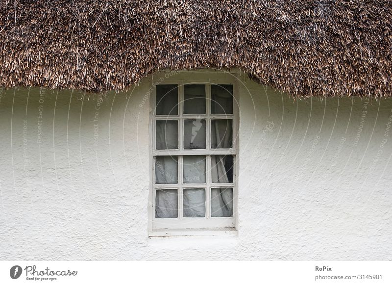 Window of an English cottage. Summer Weather Half-timbered house Facade Wall (building) Burdock plants country estate England Scotland masonry framework