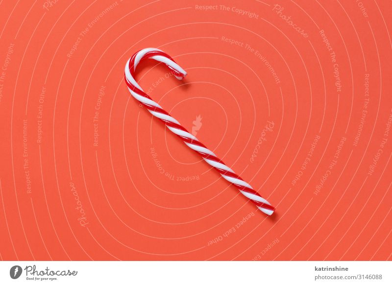Red and white Christmas stick on a red background Decoration Ornament Bright coral red Guest Festive holidays seasonal noel Copy Space Minimal Conceptual design