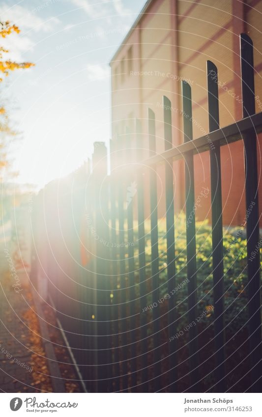 Metal fence with back light in autumn Evening sun attentiveness Exterior shot reflection Chemnitz Season foliage October outdoor tranquillity Sunlight