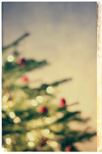 christmas tree, defocused Living or residing Flat (apartment) Interior design Decoration Room Living room Feasts & Celebrations Christmas & Advent Tree