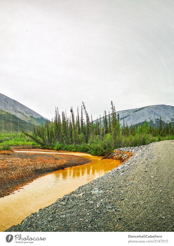 Landscape of a river along a gravel road Yukon Territory River Dempster Highway Hill Mountain Forest Street Gravel road Wilderness Tombstone National Park