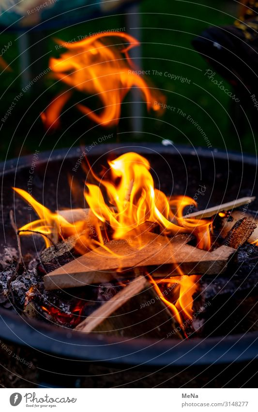 fire painting Art Dance Elements Fire Animal Sign Good Uniqueness Surrealism Fantasy literature Existence Phenomenon Fireglow Painting and drawing (object)
