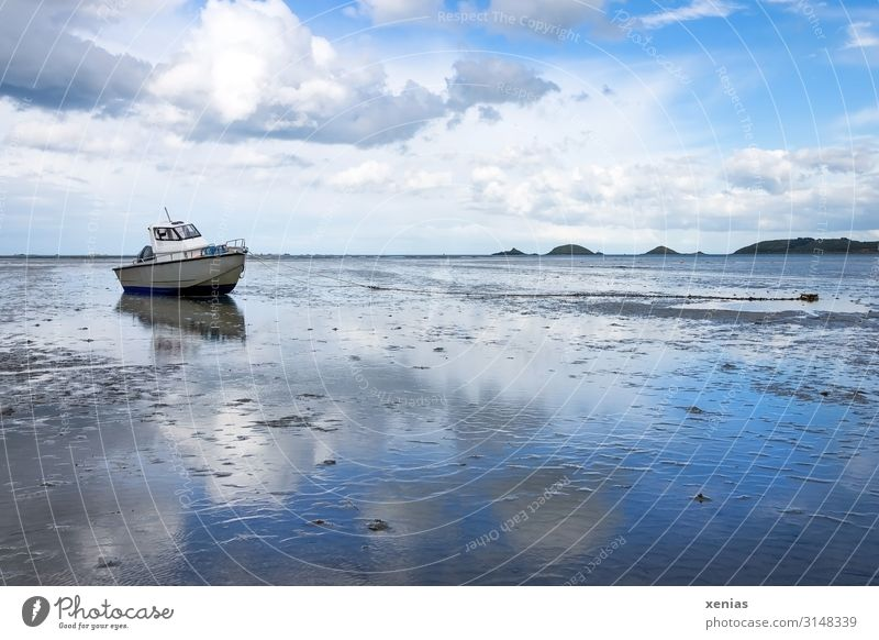 Boat at low tide with blue sky and fine weather Clouds reflected in the wet sand boat Vacation & Travel Summer Beach Reflection Ocean Landscape Sky Spring
