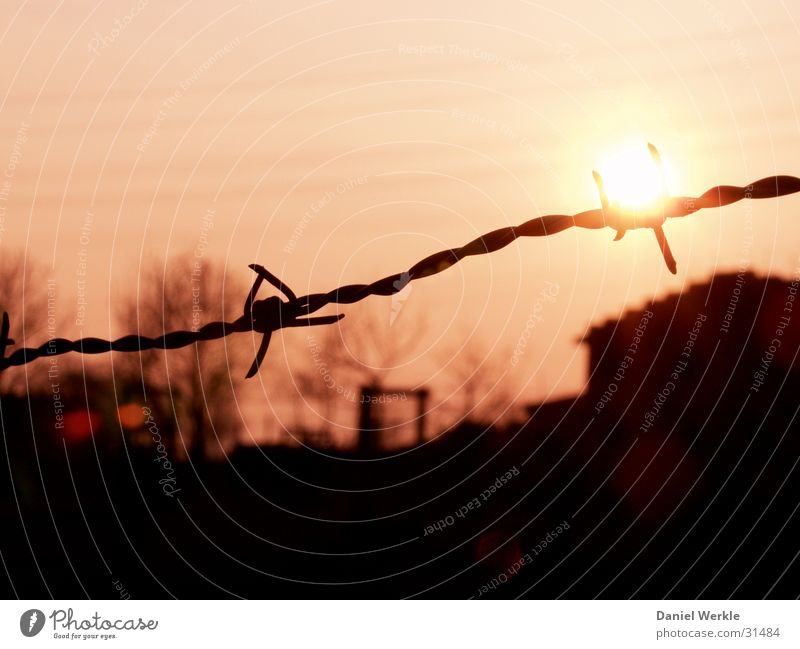 Sun Orange Dusk Barbed wire