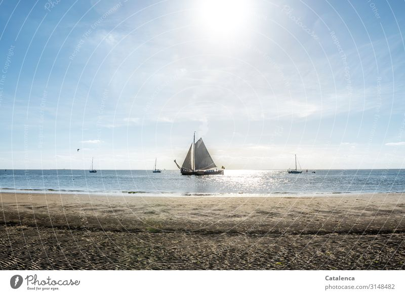 A flat-bottomed ship sails lazily past the beach, the tide sets in and the sun shines Beach Coast Ocean Water Sand Vacation & Travel Horizon Sky Summer