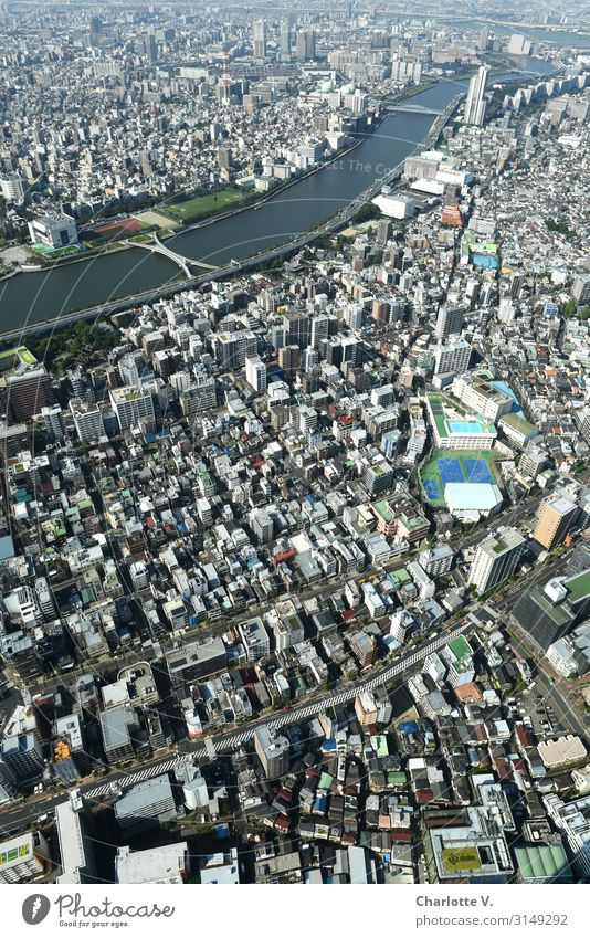 More blocks and a snake. Tokyo Japan Asia Capital city Downtown House (Residential Structure) High-rise Stone Concrete Water Exceptional Cool (slang) Elegant