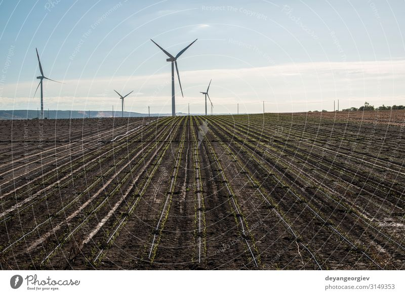 Wind generator in agriculture land. Summer Industry Technology Environment Nature Landscape Earth Sky Clouds Sustainability Blue Energy turbine electricity