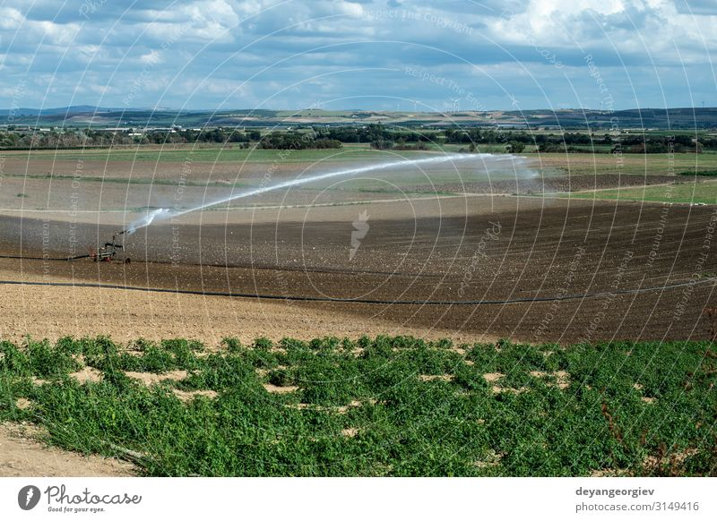 Watering green plants and plowed soil. Newly planted Nutrition Summer Work and employment Industry Tool Technology Metal Growth Green sprinkler Farm panorama