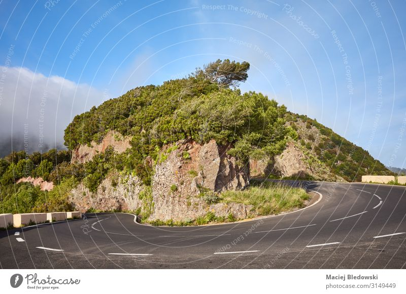 Scenic road bend in Anaga mountain range, Tenerife. Vacation & Travel Tourism Trip Adventure Freedom Expedition Cycling tour Summer vacation Mountain Nature
