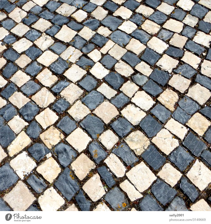 Mosaic attempt... Transport Traffic infrastructure Lanes & trails Cobblestones Stone Exceptional Sharp-edged black-and-white Paving stone Cobbled pathway
