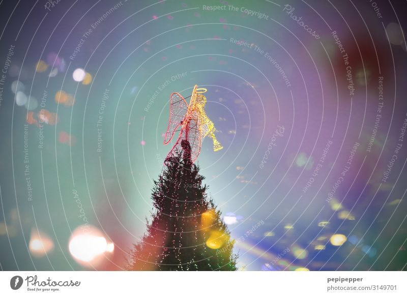 giant Christmas tree Winter Christmas & Advent Trade Androgynous Event Music Dortmund Town Downtown Tourist Attraction Landmark Dress Halo Angel Multicoloured