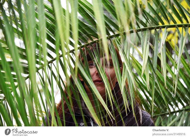 In the jungle | UT HH19 Human being Feminine Woman Adults 30 - 45 years Nature Plant Foliage plant Wild plant Exotic Palm frond Palm tree Brunette Observe