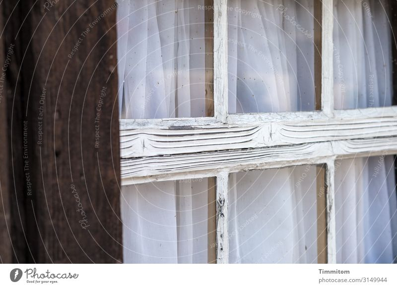 Black Forest bar windows Vacation & Travel Living or residing House (Residential Structure) Farm Window Wood Glass Old Broken Blue White Emotions
