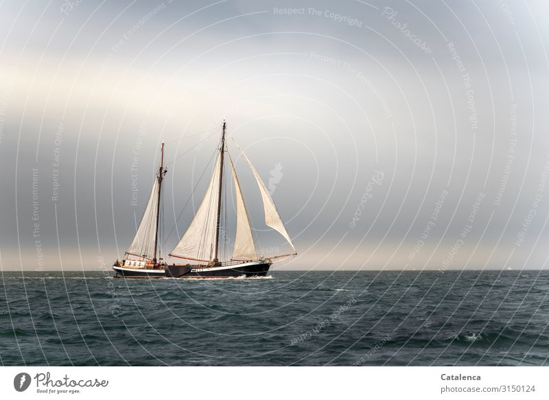 ahoy Sailing Nature Elements Air Water Sky Clouds Horizon Weather North Sea Ocean Navigation Yacht Sailing ship Movement Driving To enjoy Authentic Fluid