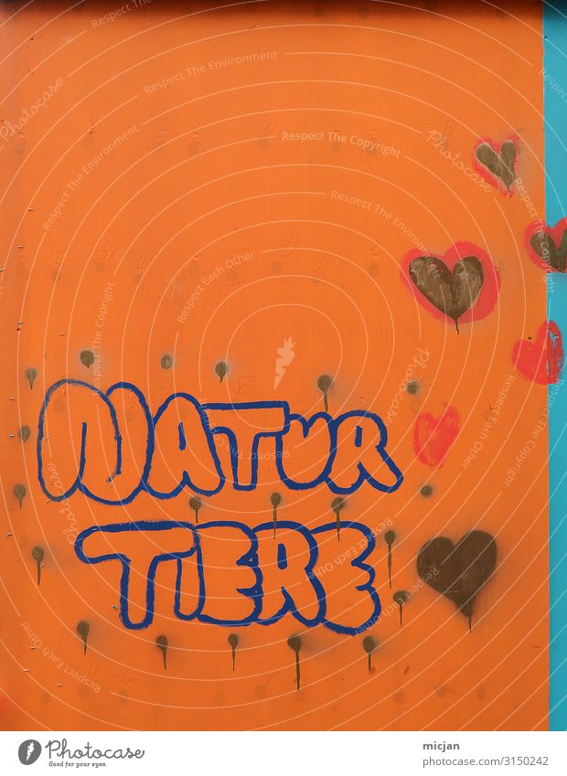 Nature Blue Town Animal Life Graffiti Wall (building) Environment Love Natural Art Wall (barrier) Orange Characters Heart Creativity