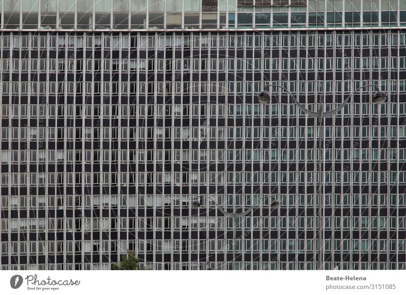High-rise building with lighting Living or residing Construction site Paris Town Capital city Downtown House (Residential Structure) Facade Window
