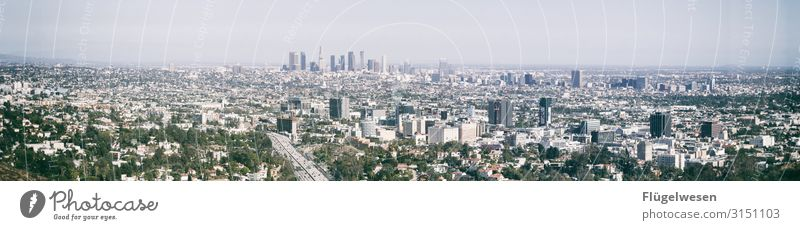 LA Panorama La Los Angeles USA American Flag Americas City Hollywood Overpopulated High-rise