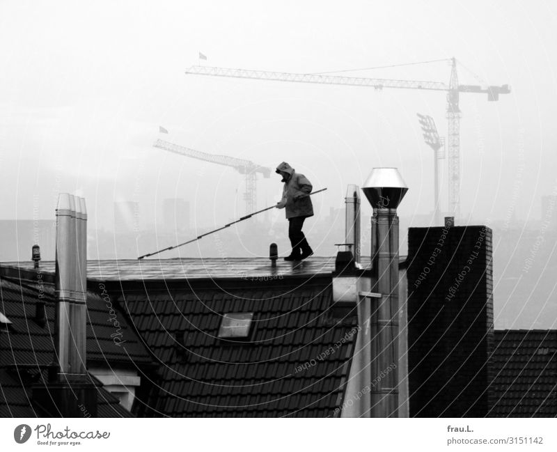 roofer Work and employment Craftsperson Construction site Craft (trade) SME Masculine Man Adults 1 Human being 30 - 45 years Authentic Town Integrity Diligent