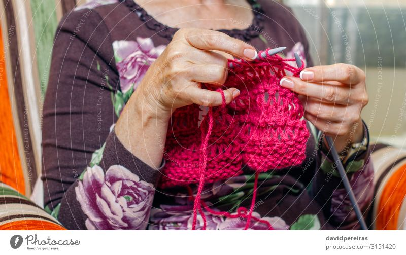 Hands of woman knitting a wool sweater Design Relaxation Leisure and hobbies Handicraft Handcrafts Knit Living room Work and employment Craft (trade)