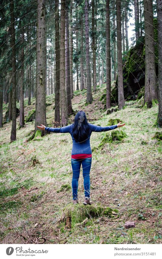 Good morning forest Wellness Life Harmonious Well-being Senses Relaxation Calm Meditation Trip Camping Yoga Human being Feminine Young man Youth (Young adults)