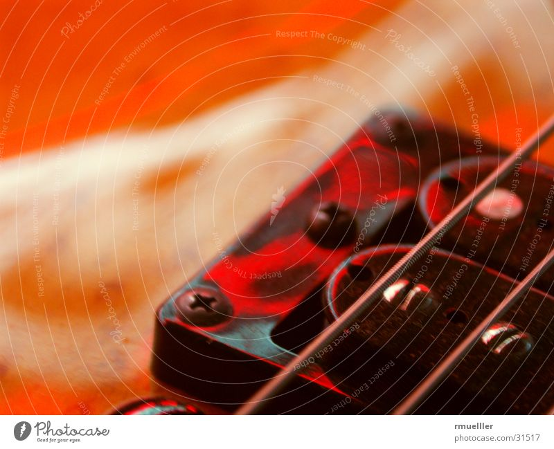 Red Strings Musical instrument string Things Acoustic Pick-up head Sound Leisure and hobbies Guitar Macro (Extreme close-up) Tone Joy