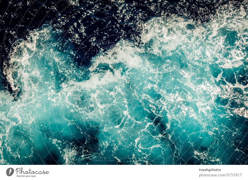 ocean Environment Landscape Elements Water Waves Ocean Navigation Inland navigation Cruise Boating trip On board Vacation & Travel Force of nature White crest