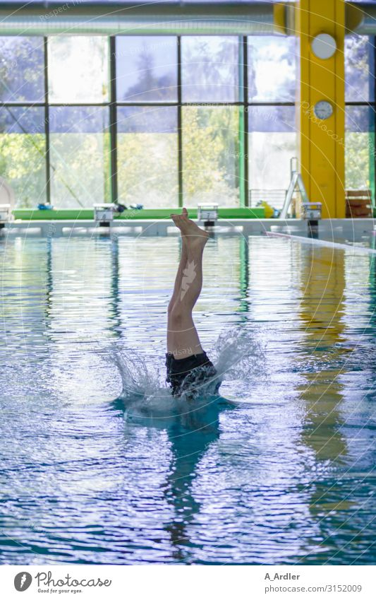 Jump in the deep end Athletic Fitness Life Swimming pool Swimming & Bathing Leisure and hobbies Waves Sports Sports Training Sportsperson Sporting Complex