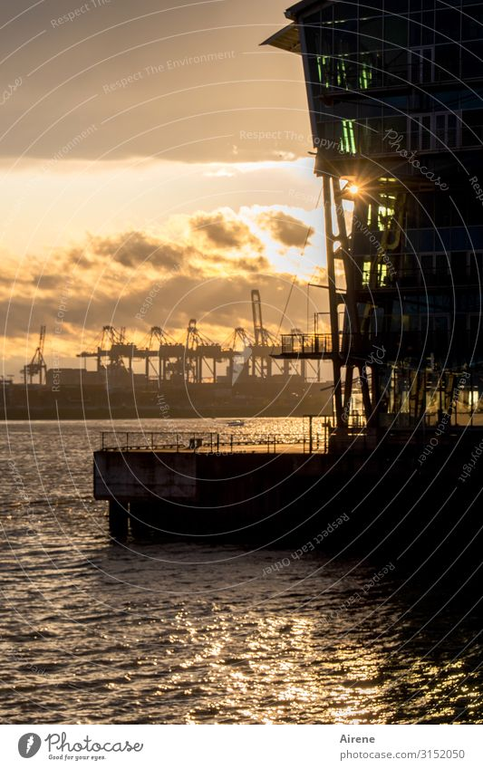 Town Black Work and employment Moody Gold Esthetic Hamburg Manmade structures Harbour Wanderlust End Nostalgia Goodbye Port City Closing time Shipyard