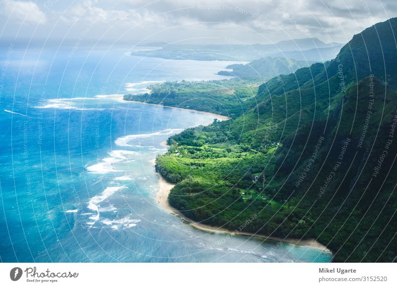 Aerial view of the abrupt and green Napali Coast in Kauai, US Beautiful Vacation & Travel Summer Beach Ocean Island Mountain Garden Nature Landscape Sky Tree